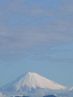 我が家から望む雪と云えば「富士山」である。前日の大雨は富士山をお馴染みの姿にお化粧した。 そのお化粧代を窒素換算すると、どの位の量なのかと想像してみた。