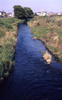 栃山川の流れ。大井川から取水され、この地域の用水路として、なくてはならない命の源を運ぶインフラである。
