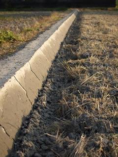 松下と取り組む9年目のシーズン。今、松下は田圃の整備と自家製肥料作りに真っ最中。抑草効果を最大限生かすための技術、それは手間を惜しまずただひたすらに田圃を平らにすること。そして水漏れしない畦をしっかり作ること。緑肥(レンゲ、ヘアリーベッチ)の状態をしっかり観察し、すべての田圃の状態をデータ化すること。4月いっぱいたっぷりと時間を掛けてそれらの整備を行う。松下は言う。「この期間でしか田圃に関わることできない。だから、ここが勝負・・・田植えしちゃったら、あとは本人(稲)任せだからね・・・」。