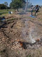 火耕水耨(かこうすいどう)