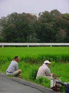 松下高野7月17日号 「自転車で田圃へ行く」についてのお話しの巻
