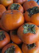 敷地の次郎柿