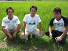 第31回 カミアカリ産地レポート(2)福島会津菅井さんのカミアカリ