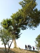 2010カミアカリツーリズム写真集10【最終回】